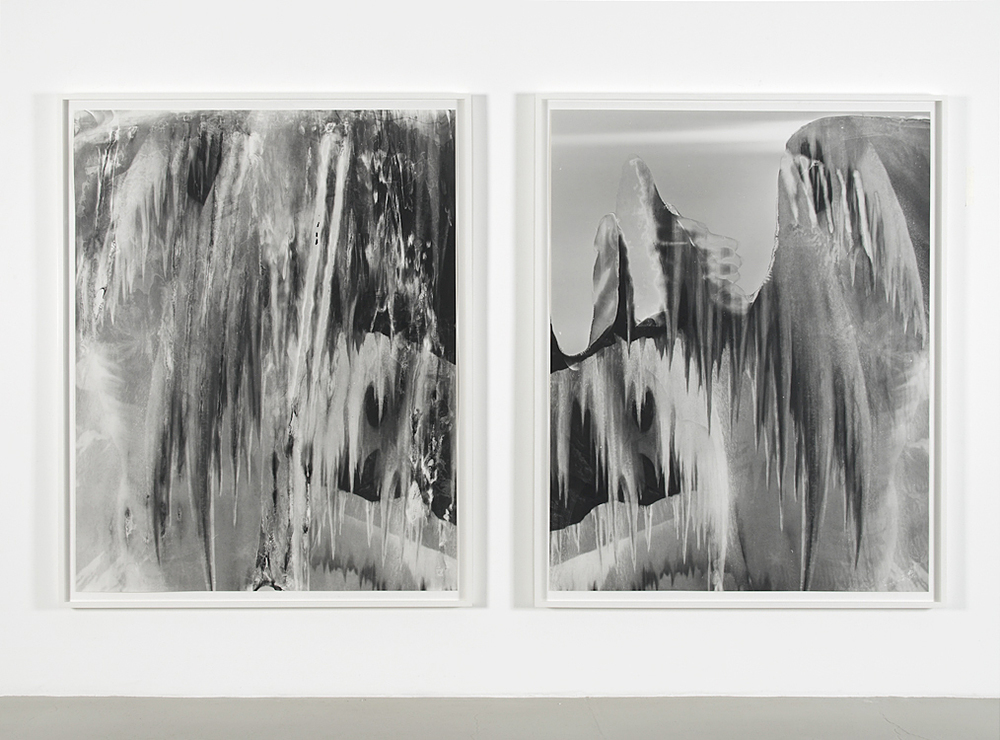 Coming of Winter, 2015     Gelatin silver prints hinged on museum board      61 x 48 inches each (diptych)