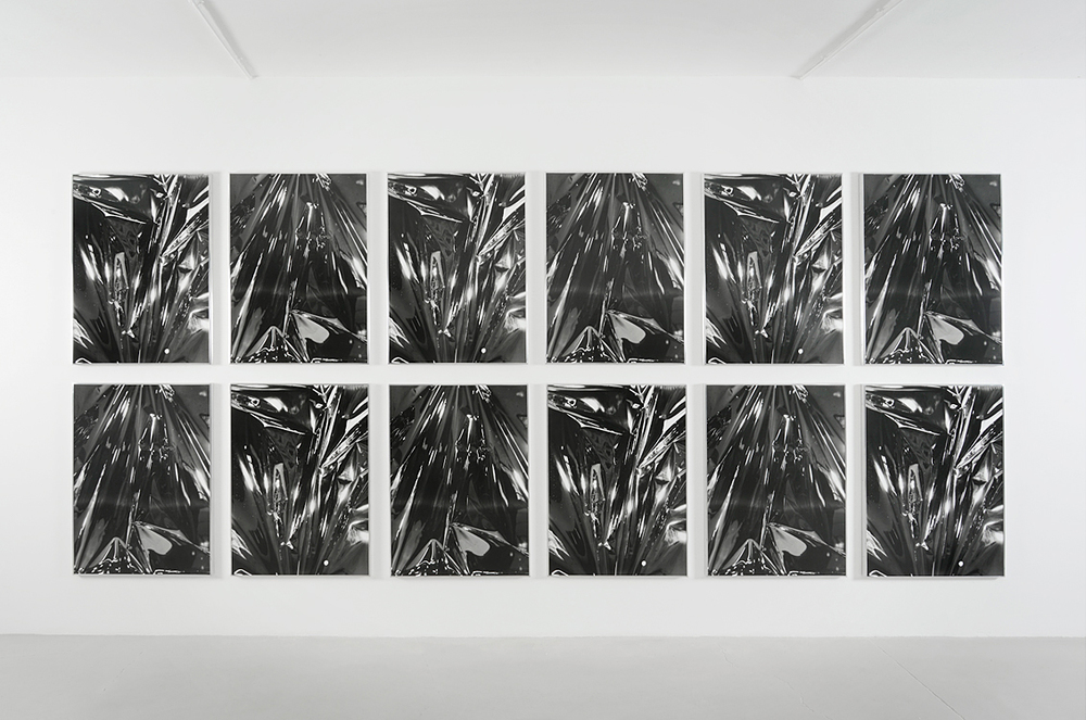 Twinned Mitsouko, 2008-2015     12 Gelatin silver prints mounted on museum board and dibond      40x30 inches each