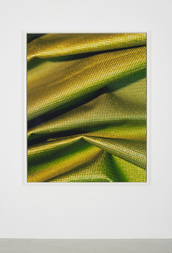 Emily, 2012      Digital C-print mounted on aluminum      152.4 x 121.9 cm / 60 x 48 inches