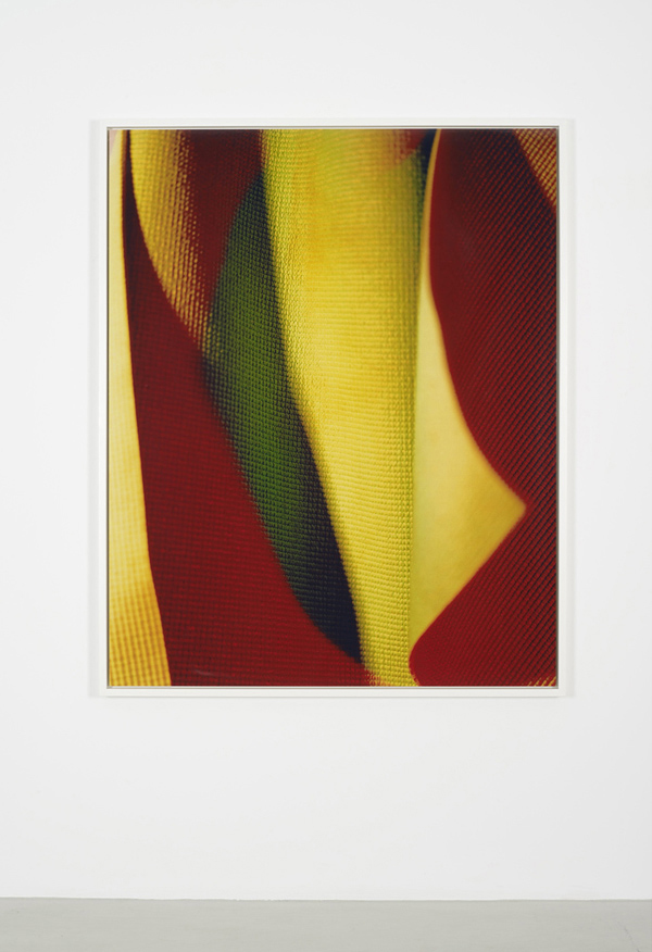 Kali, 2012      Digital C ̵print mounted on aluminum      152.4 x 121.9 cm / 60 x 48 inches