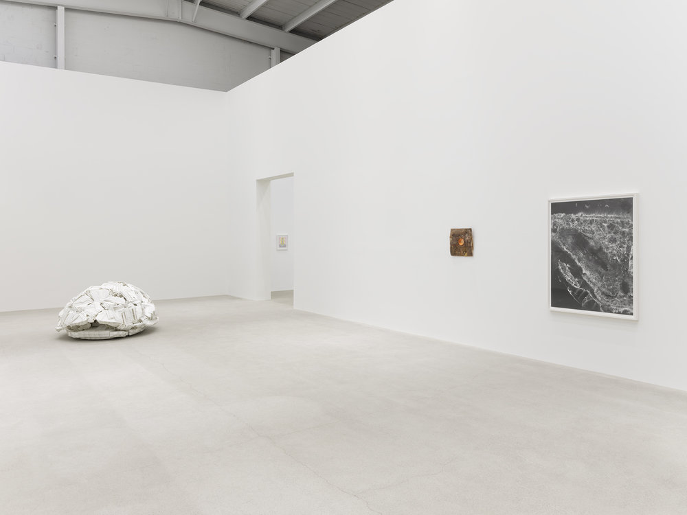Installation view with works by Rochelle Goldberg, Jerry Pethick and Nick Sikkuark