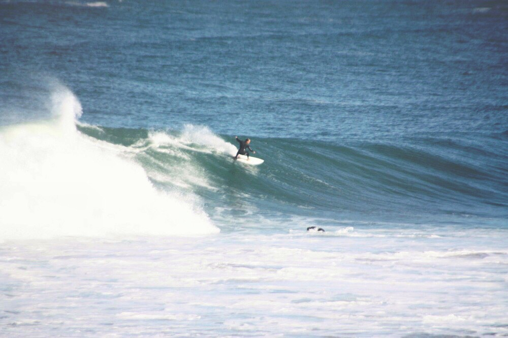 High speed cutback