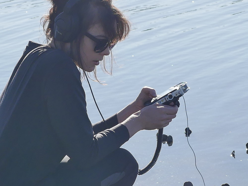Recording the oysters at the reef. Photographed by Amelia Weber.