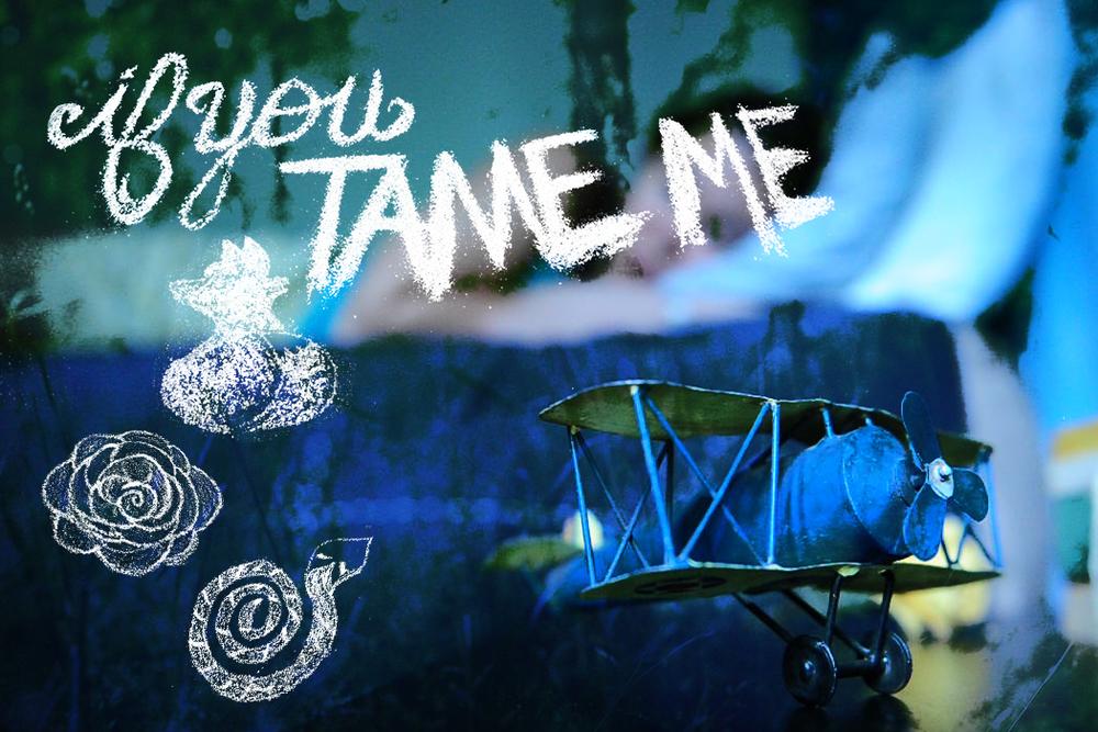 ifyoutameme (front).jpg