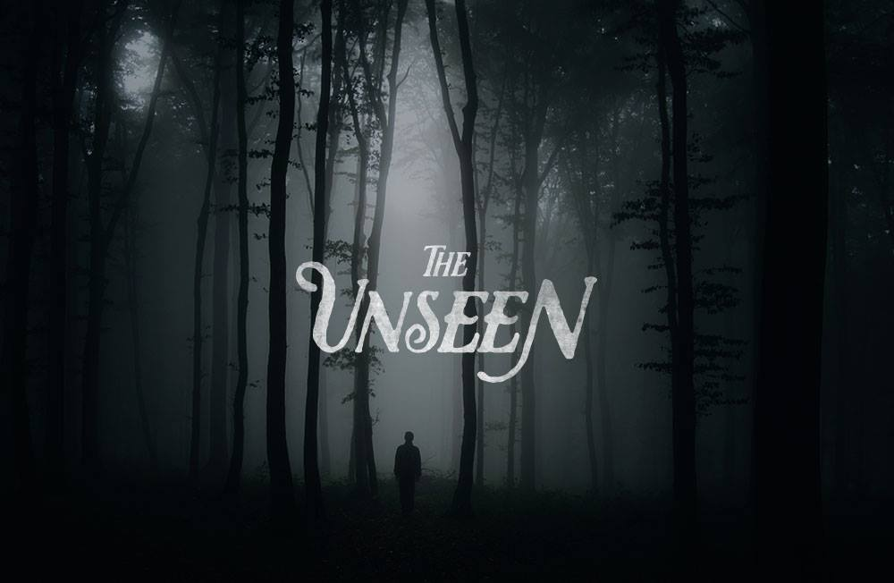 The unseen poster.jpg