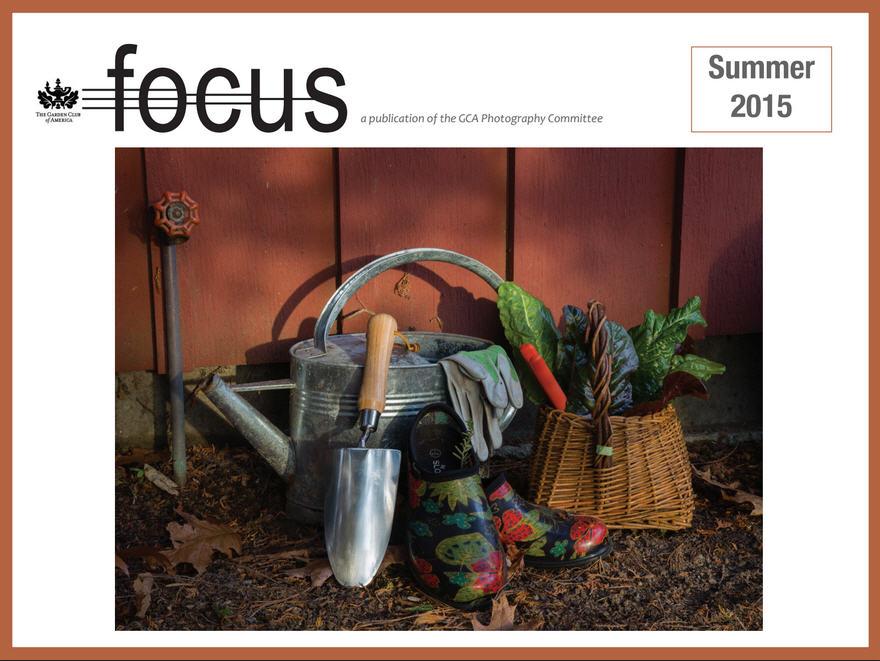 focus-cover.jpg