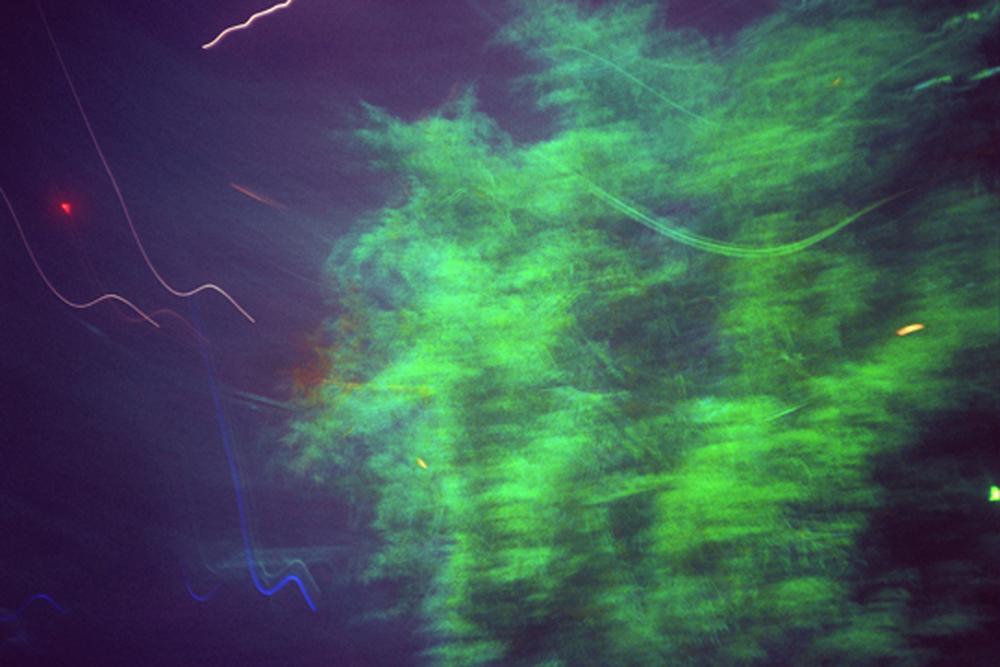 tree1El.jpg
