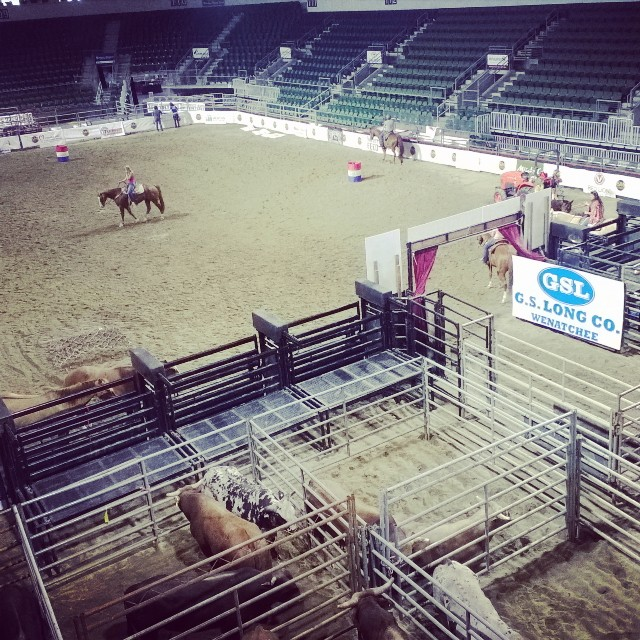 It's almost time for some rodeo! Hell on Hooves tonight and tomorrow night-tickets are just $20, and kids 12 and under are $5 with a voucher. Visit towntoyotacenter.com for more info. Hope to see you there! #rodeo #pickwenatchee #towntoyotacenter