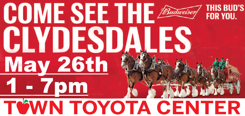 Clydesdales Digital Billboard.jpg