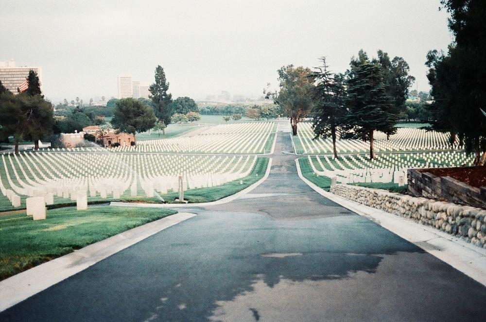 Cemetery Flings