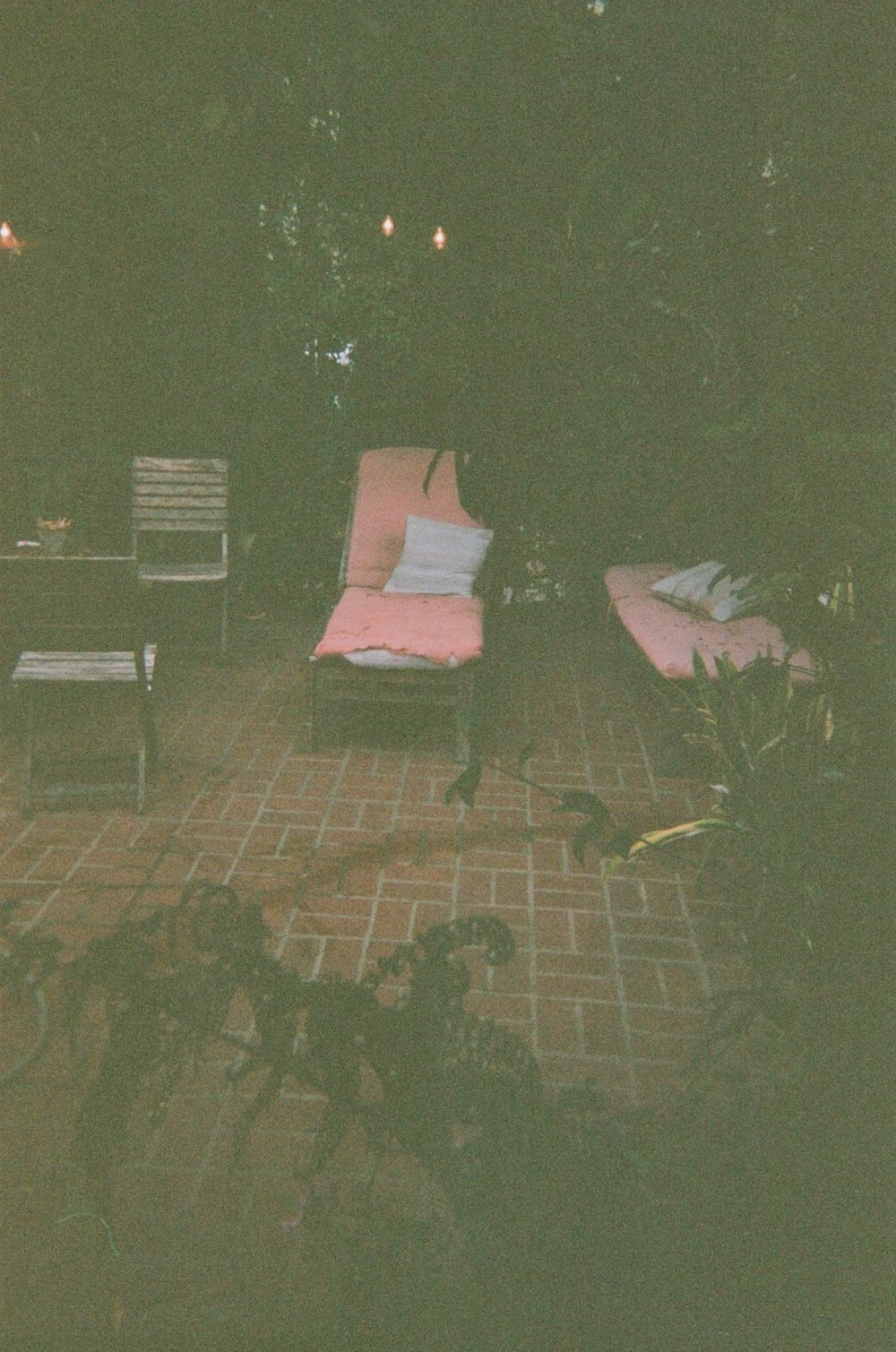 pink chairs hollywood.jpg