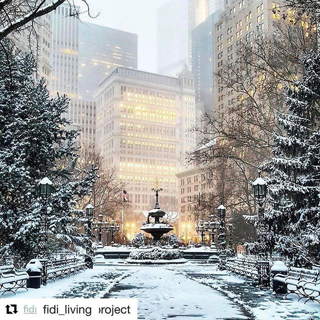#propertymanagement #nyc #winterinnyc #manhattan #fidi #nylikes #nyhomes #nyrealtors #nybrokers  #Repost with @repostapp ・・・ We love this one of City Hall Park.  Even if winter is cold and blustery, it does bring moments like this...#Repost @myinspireproject with @repostapp ・・・ The snow and lights! Let it snow! ☃☃☃❄❄❄🗽🗽🗽 #nyc #myinspireproject