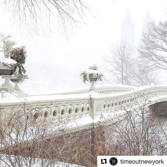 Our beautiful city dressed in snow ❄️! #propertymanager #nyrealtors #nybrokers #nyc #nyfood #nywinter  #Repost @timeoutnewyork with @repostapp ・・・ And so it begins.... Tag your snowy photos #timeoutnewyork! (📷 @laws_lens)