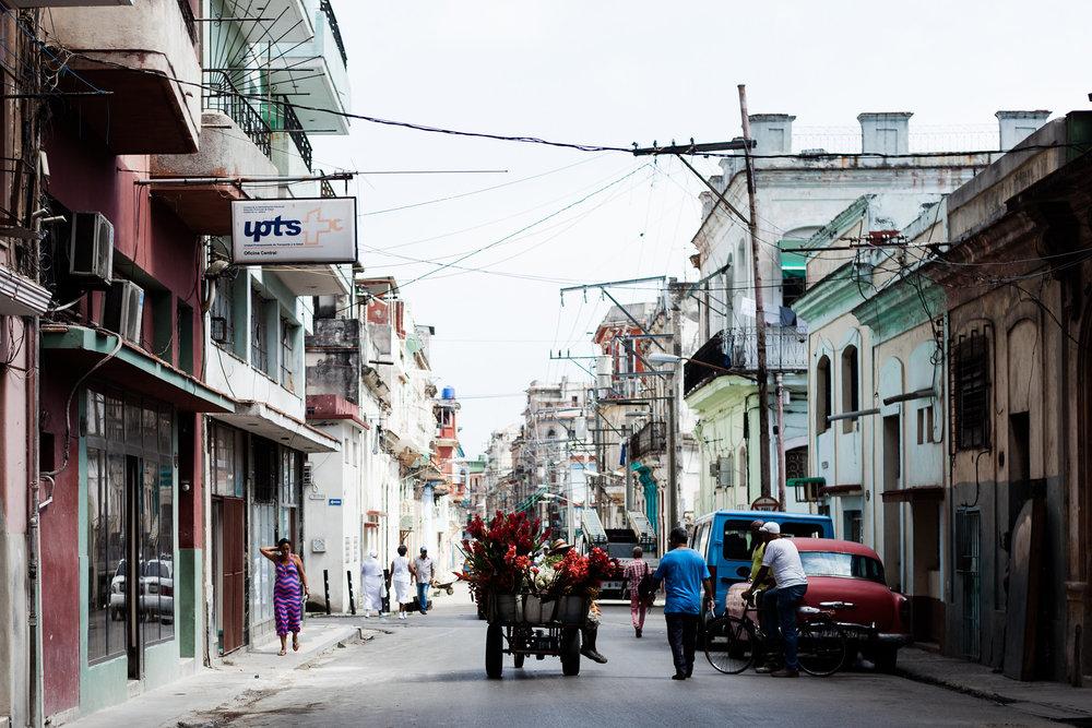 Havanacocosistersday4.jpg