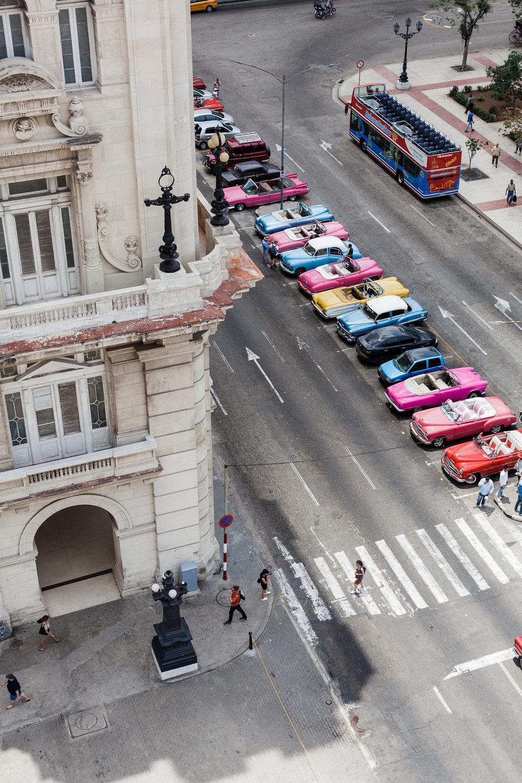 Havanacocosistersday4-16.jpg