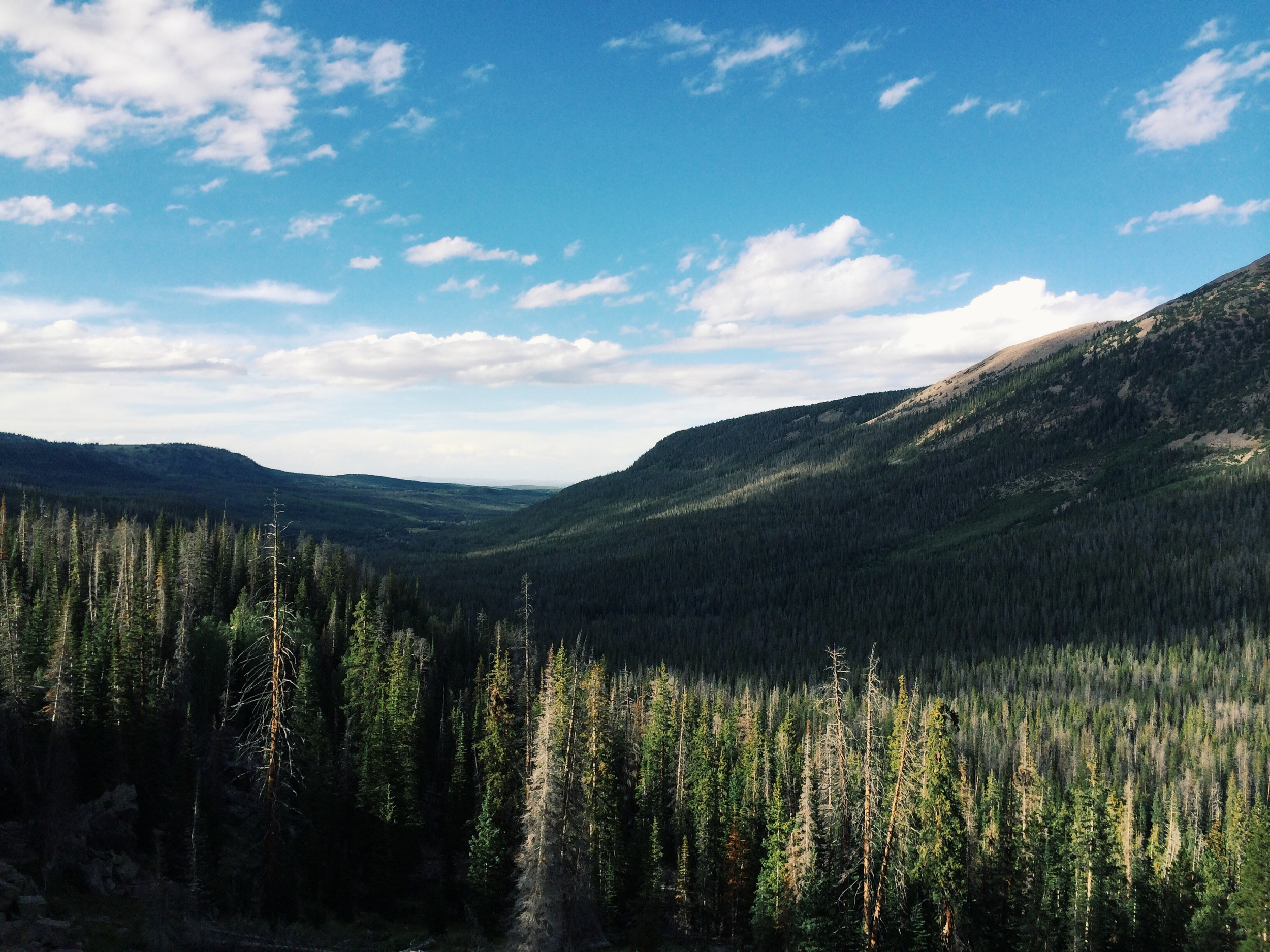 high uintas wilderness 1