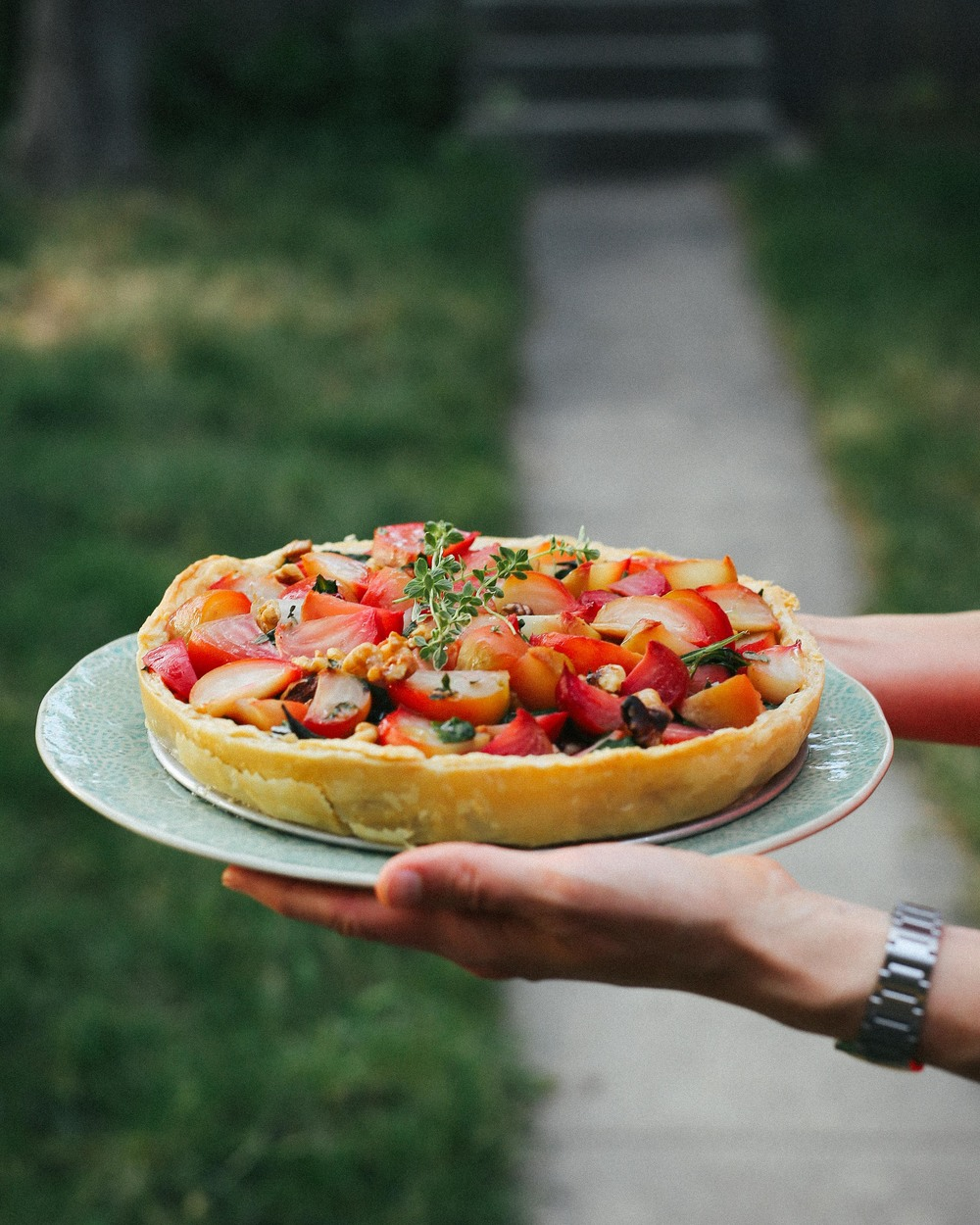 chiogga beet tart | field + forest