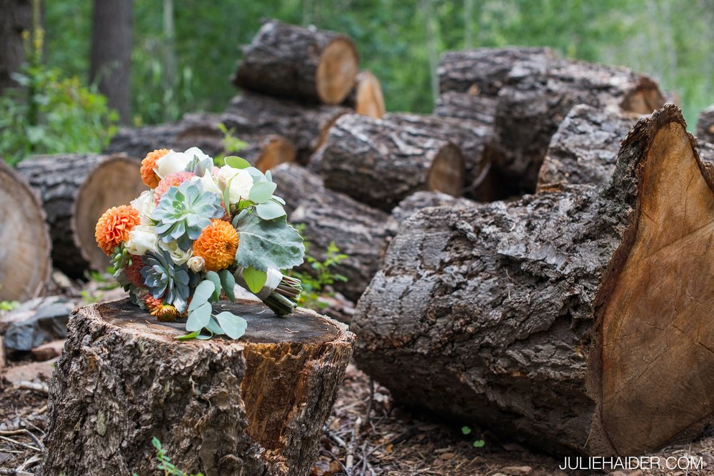 Hyde-State-Park-Santa-Fe-Rustic-Lodge-Mountains-Woodsy-Outdoor-Wedding-038.jpg