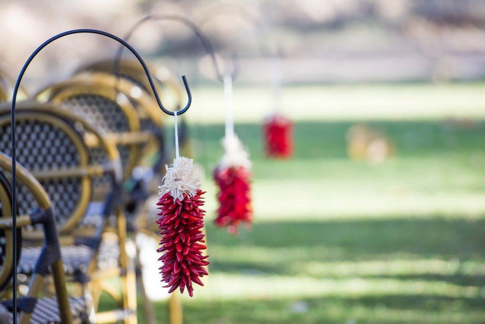 La-Mesita-Ranch-Wedding-Santa-Fe-New-Mexico-Fall-Outdoor-Ceremony-Under-Tree_23.jpg