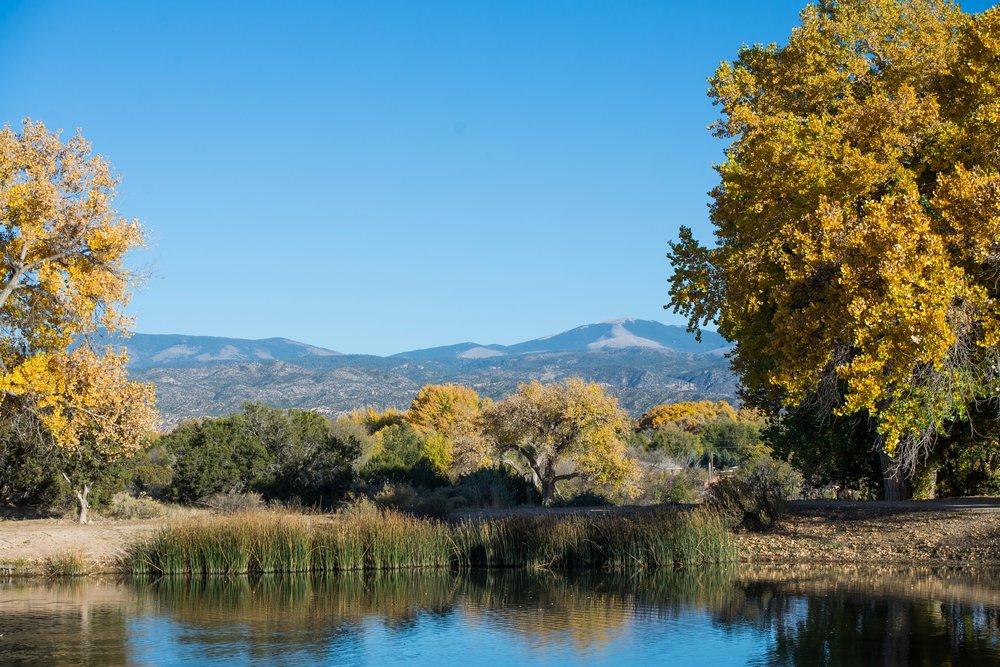 La-Mesita-Ranch-Wedding-Santa-Fe-New-Mexico-Fall-Outdoor-Ceremony-Under-Tree_22.jpg