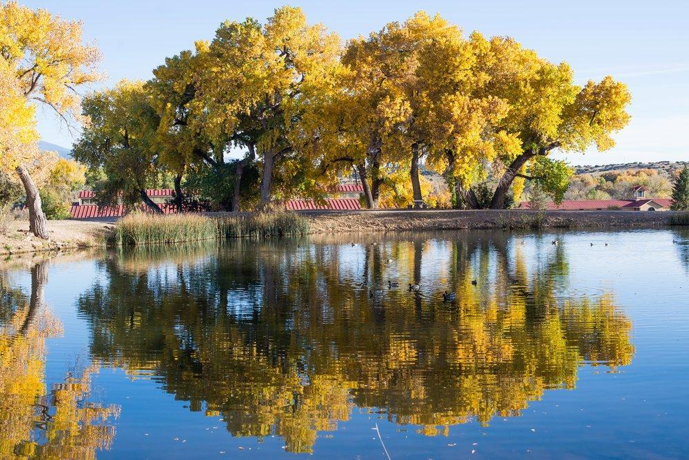 La-Mesita-Ranch-Wedding-Santa-Fe-New-Mexico-Fall-Outdoor-Ceremony-Under-Tree_27.jpg