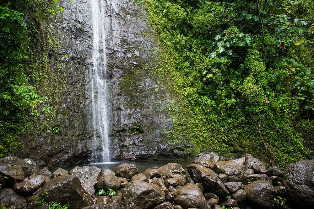 The waterfall and pool at Manoa Falls is a beautiful location for an elopement ceremony in Hawaii