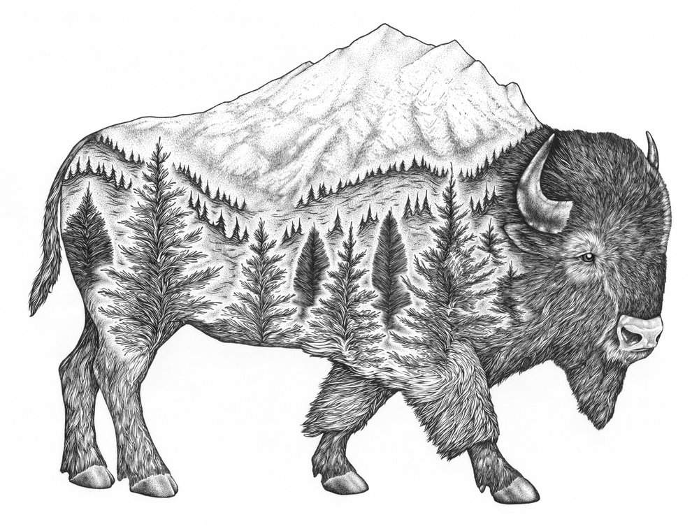 caribou - 1 (6).jpg