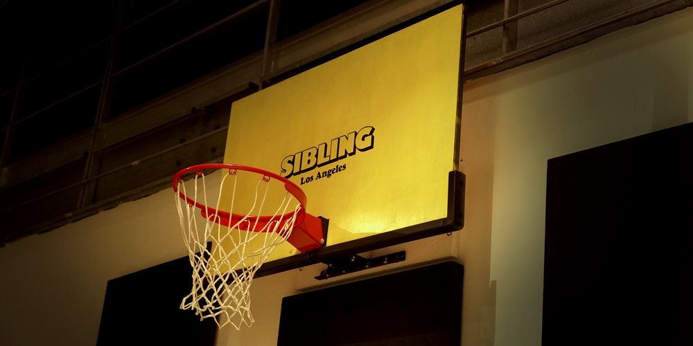 Sibling Basketball Hoop.jpg
