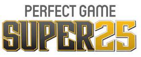 perfectgame logo.jpeg
