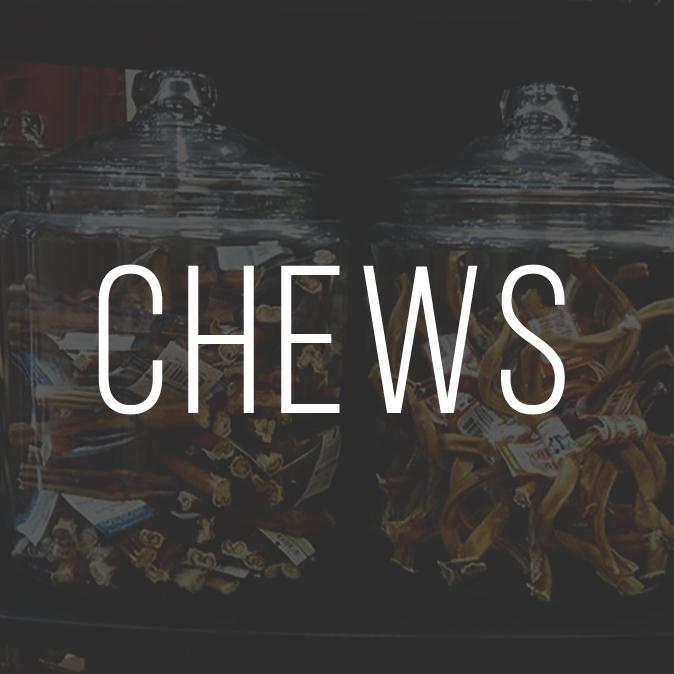 CHEWS.jpg