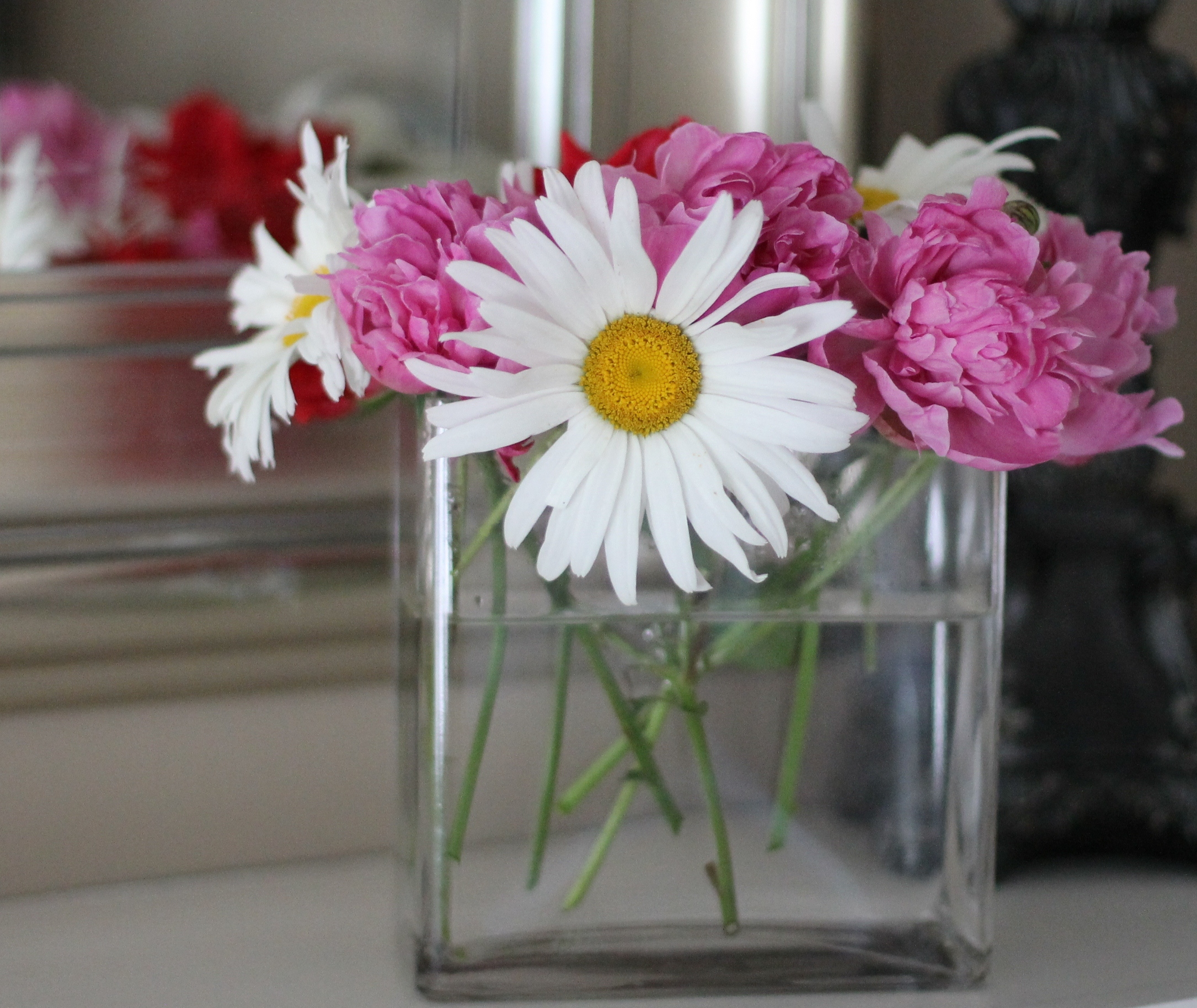 Fresh cut flowers leslie co these reviewsmspy
