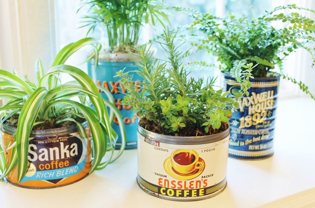 Coffee Can Planters via Leslie Reese