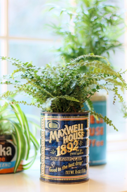 Coffee Can Planters via Leslie Reese (1)