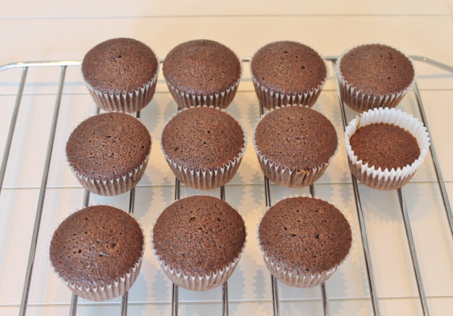 Cupcake Project (1) - Copy