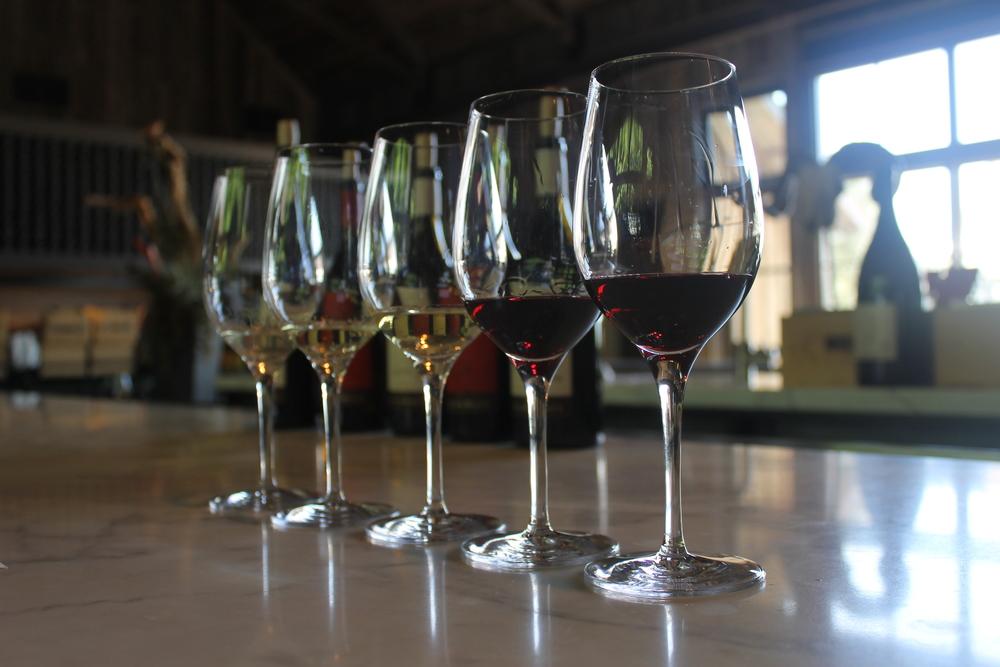 1 Pinot Blanc, 2 Chardonnays, 2 Pinot Noirs! Sip time!
