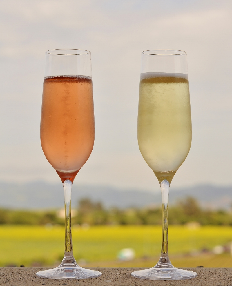 Brut Rosé & Blanc de Noir - best looking pair out here today