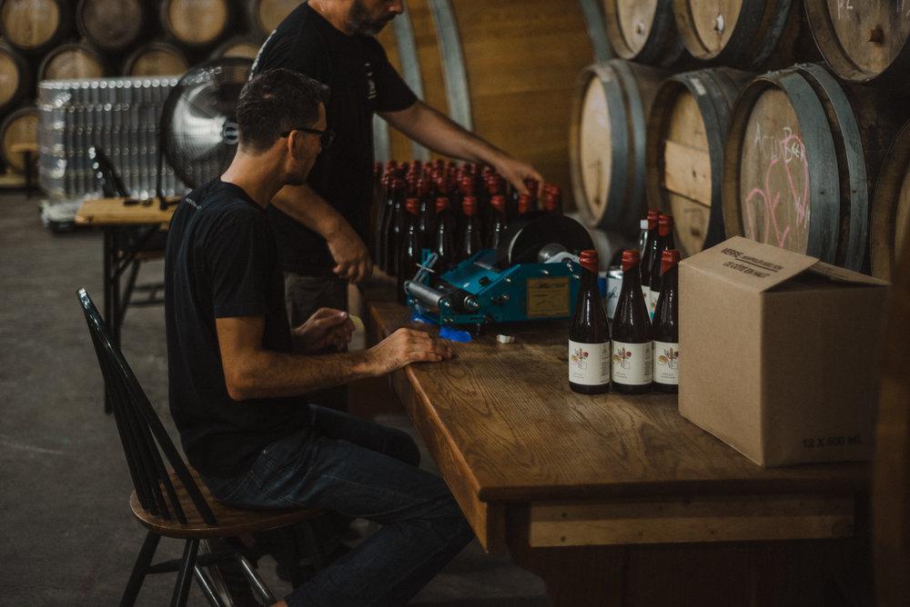 Hudson-Valley-Brewery-Team-1.jpg