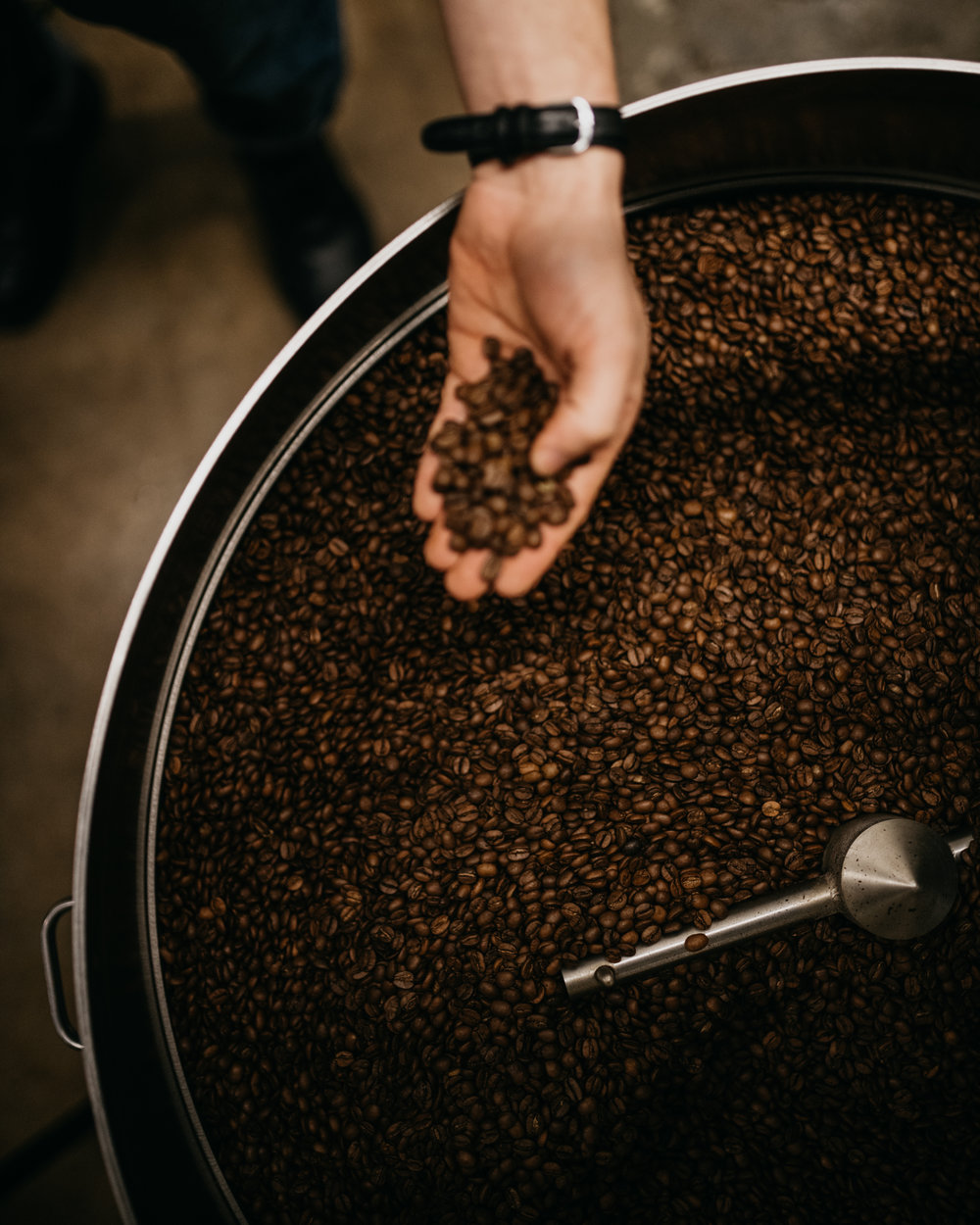 Photo of coffee beans being cooled after roasting
