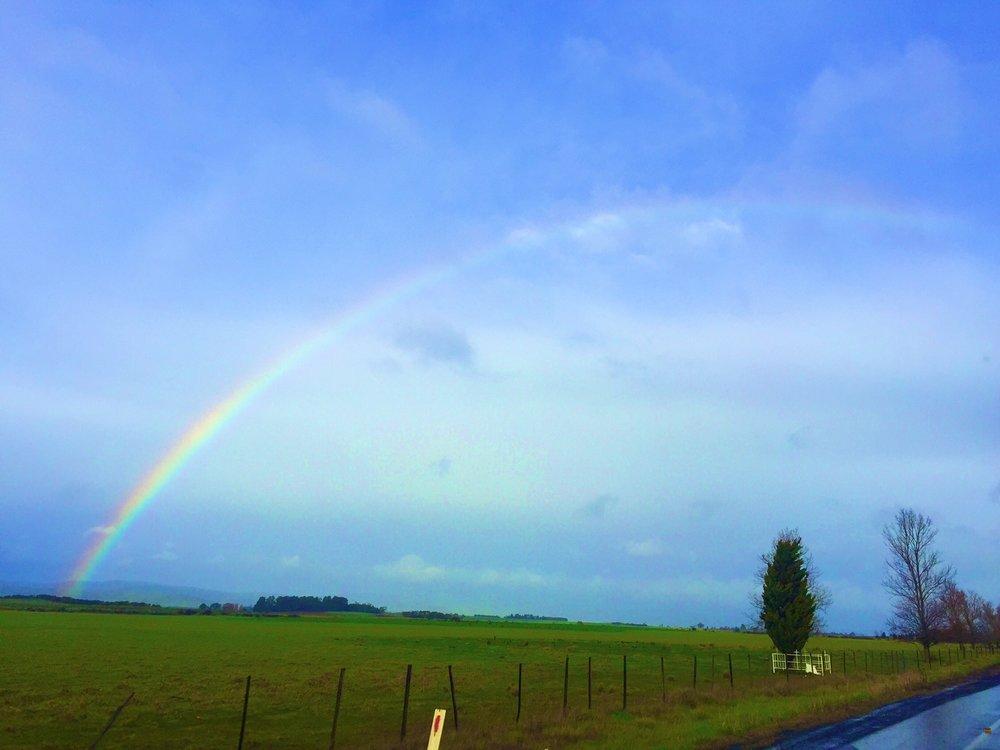 Tassie is also rainbow central