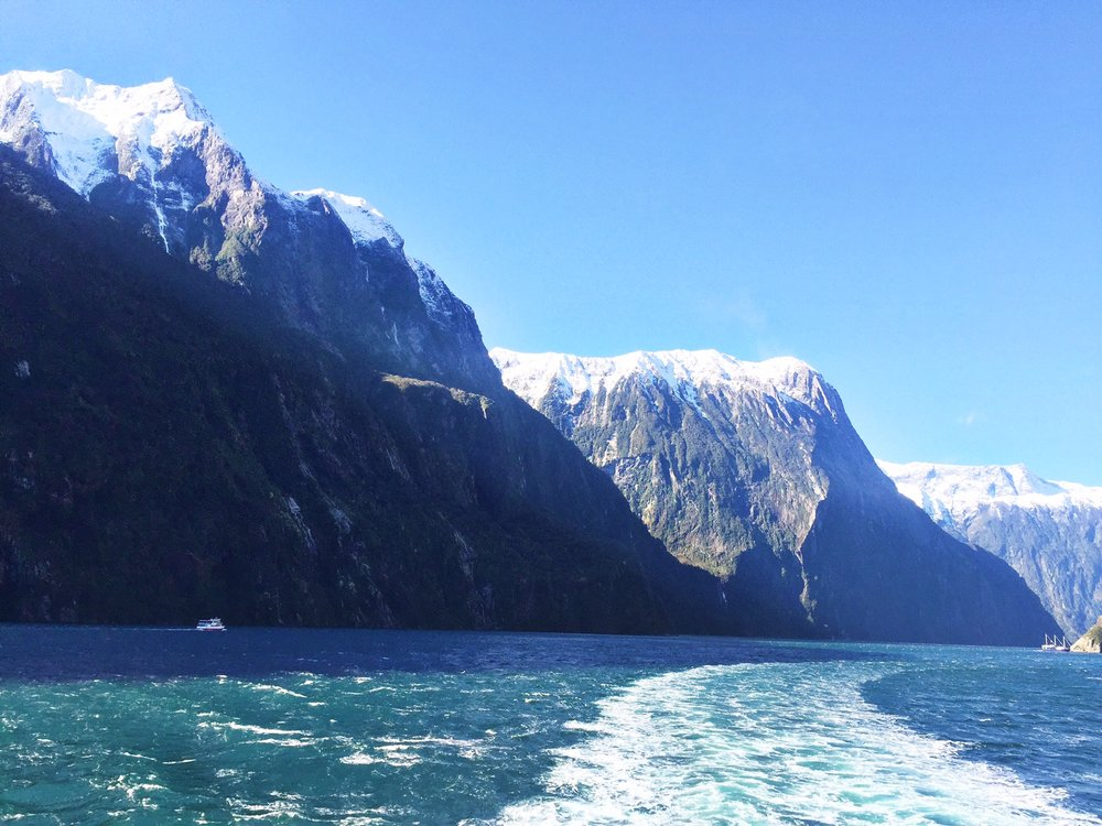 beginning of Milford Sound cruise