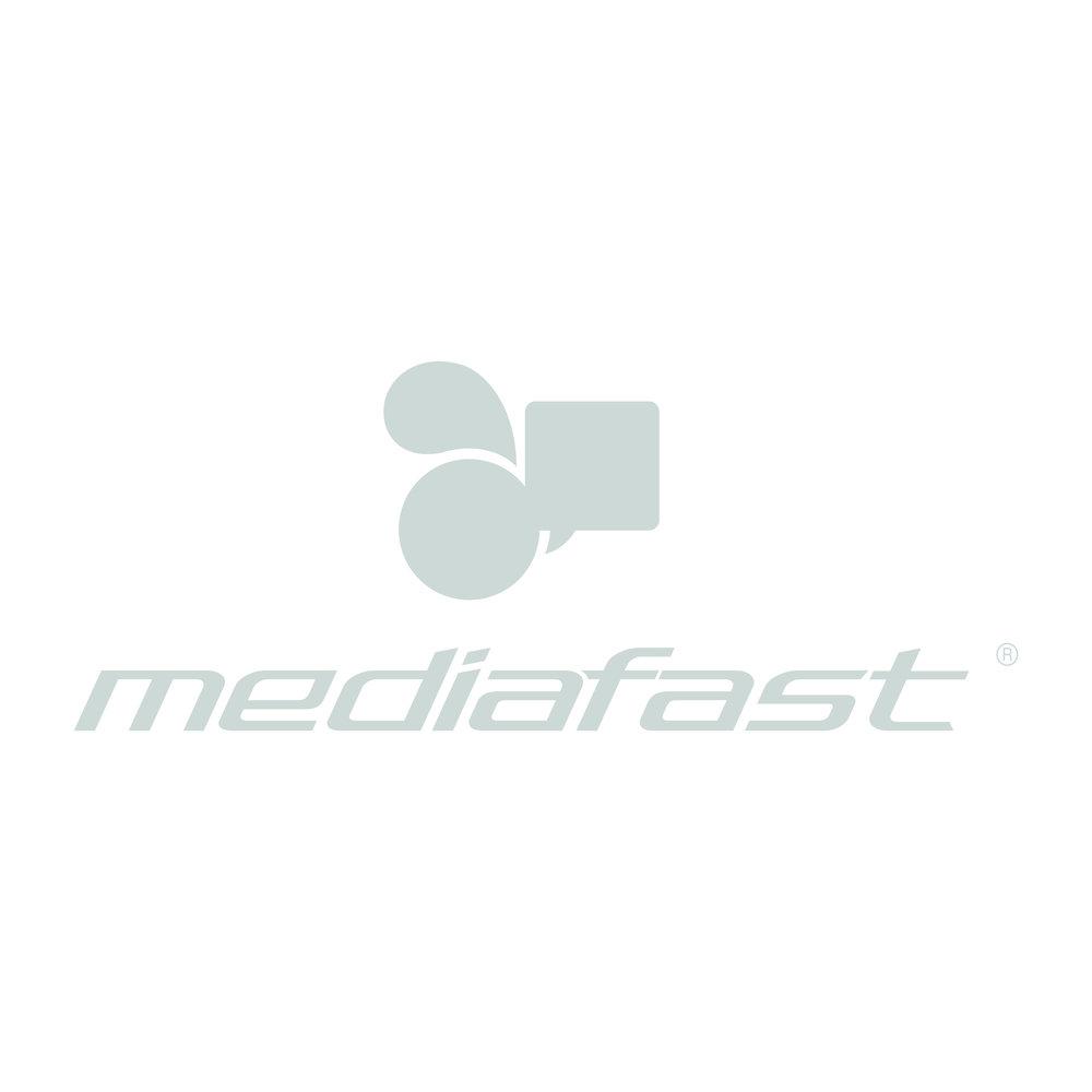 MediaFast.jpg