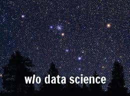 stars, 4 trees, no constellation.jpeg
