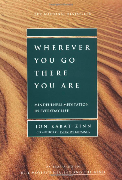 Wherever You Go book image.png