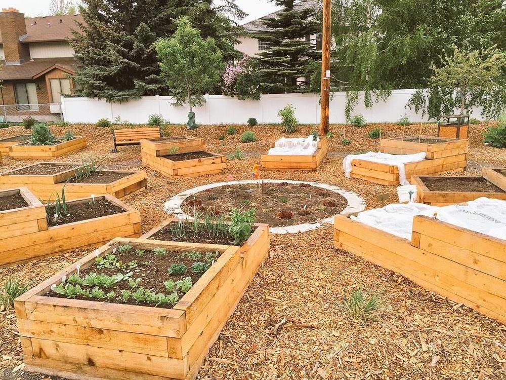 WHMV Community Garden