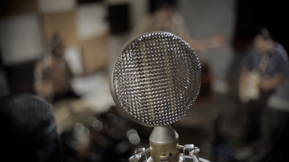 Braingasm_Lab_Ribbon_Microphone3.png