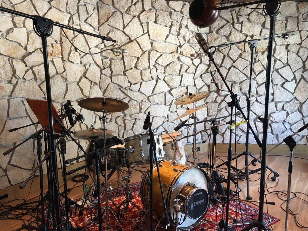 Braingasm_Microfoni_Roberto_Rosu_Studio_Microphones_Roma_7.jpg