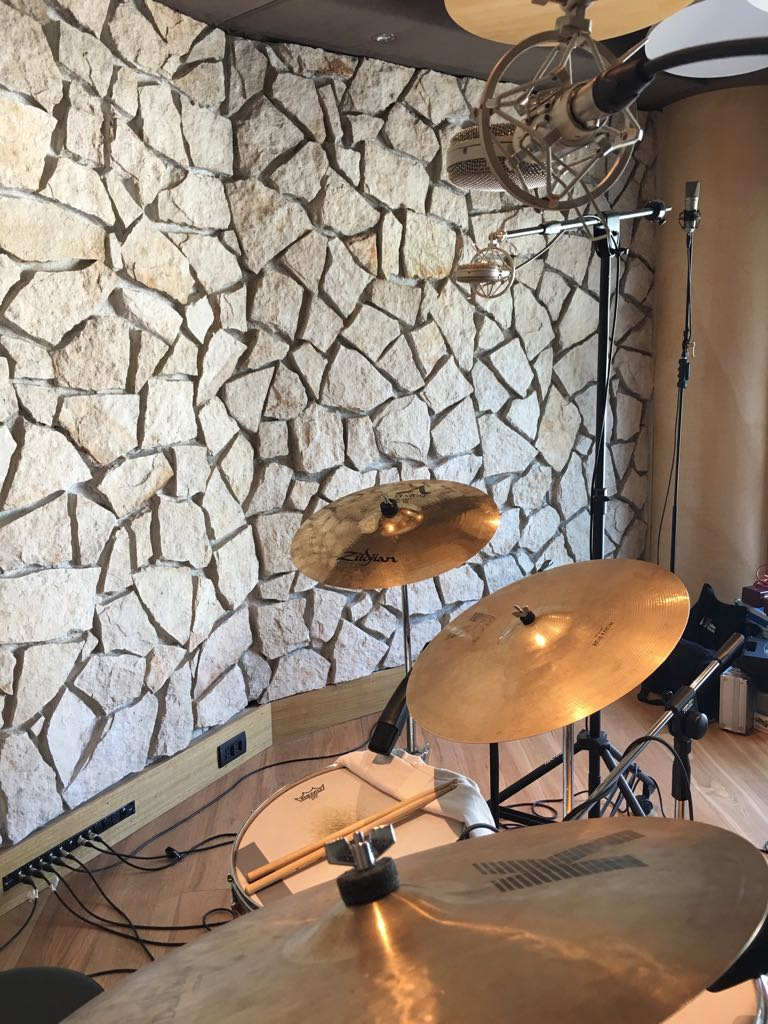 Braingasm_Microfoni_Roberto_Rosu_Studio_Microphones_Roma_8.jpg