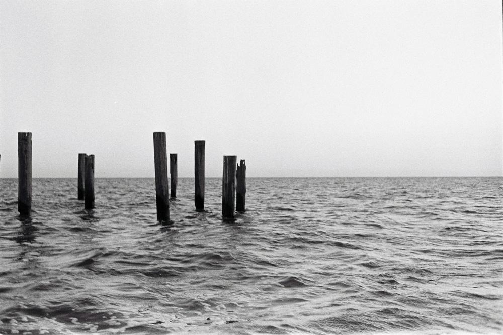 BAYOU-SEA.jpg