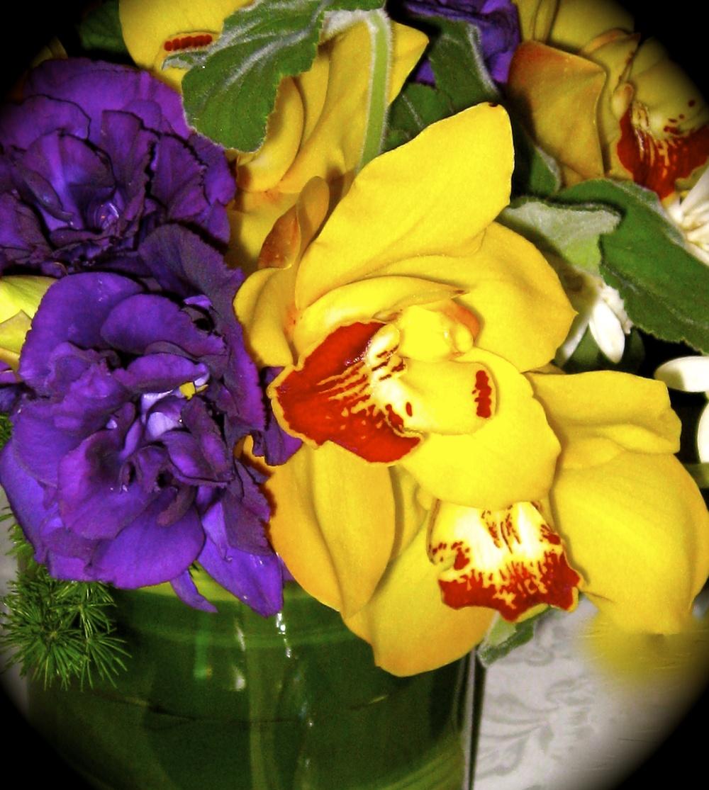 florall design5.jpg