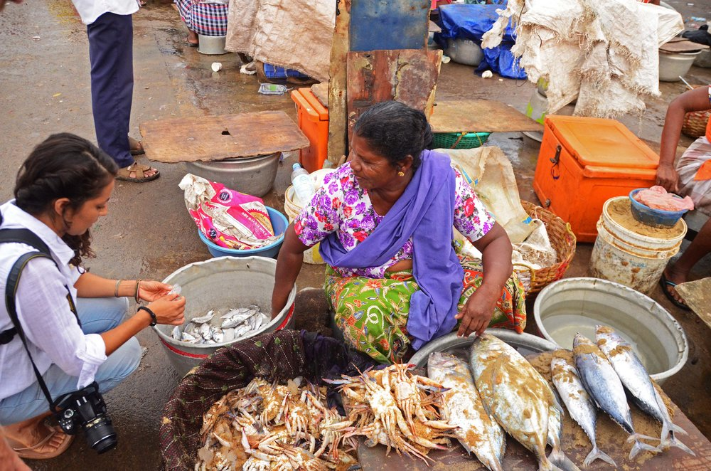 Elizabeth, one of our fisheries team members, examining the local catch and practices in Vizhinjam Harbour.